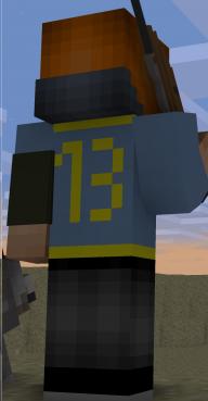 VaultDweller 13