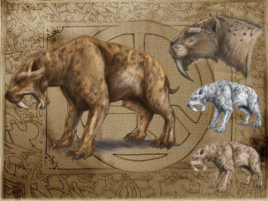 New Dawn Beast - Sabretooth Tiger